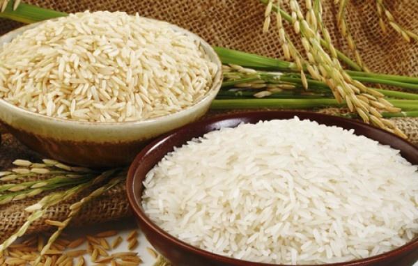 Gạo Séng Cù hạt ngọc Tây Bắc